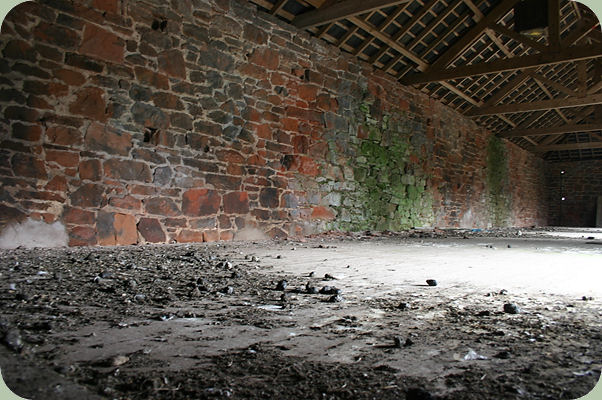 barn with owl pellets